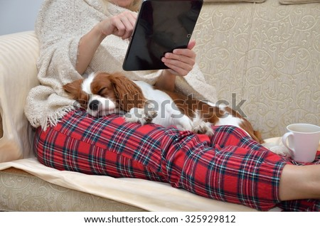 Woman in cozy home wear relaxing on sofa with a sleeping cavalier dog on her lap, holding tablet and reading - stock photo