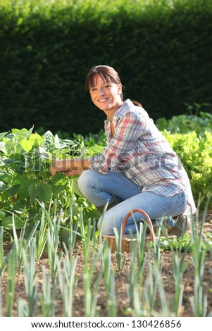 Woman in garden - stock photo