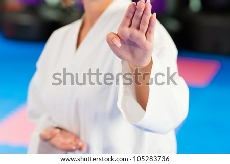 Woman in martial art training or Taekwondo in a gym - stock photo
