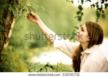 Woman in white picking chokecherries - stock photo