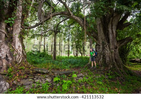 Woman is trekking in tropic forest of Nepal - stock photo