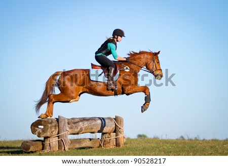 Cross Country Horse Silhouette
