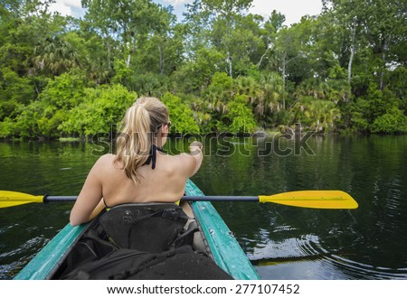 Woman kayaker pointing at an alligator in the water while on a kayaking trip down a beautiful tropical river - stock photo