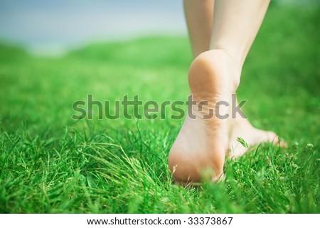 Woman legs walking on green grass - stock photo