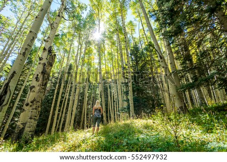 Woman Looking up, surrounded by tall trees