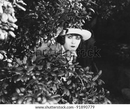 Woman peeking through bushes - stock photo