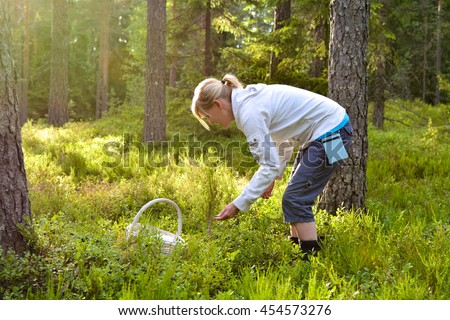 Woman picking wild berries and mushrooms in natural park forest in Finland