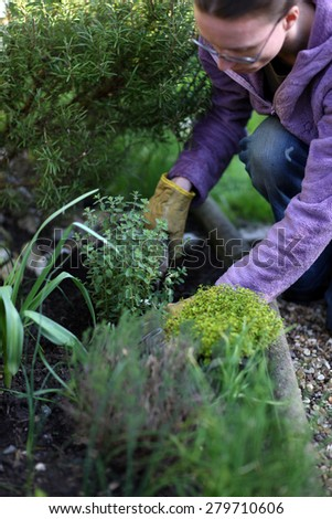Woman planting a vegetable garden