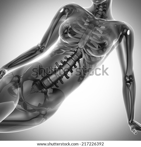 woman  radiography scan on white