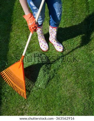Woman raking freshly cut grass in the garden, spring gardening concept - stock photo