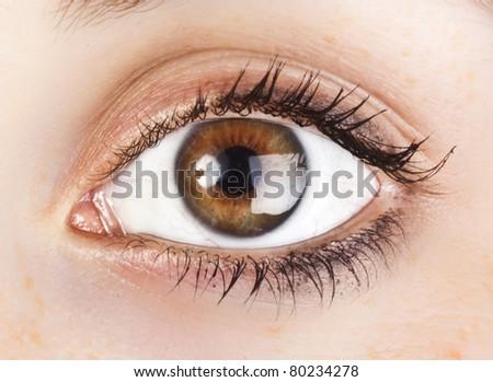 woman's brown eye - stock photo
