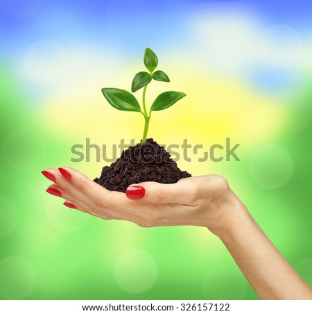 woman's hand holding a plant growing out of the ground over nature background