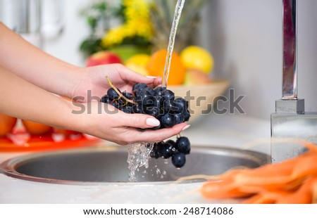 woman's hands washing a fresh grapes under the tap - stock photo