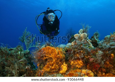 Woman Scuba Diving Over a Coral Reef with Coral and Sponges - Cozumel, Mexico