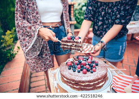 Woman serving chocolate cake in a summer party  - stock photo