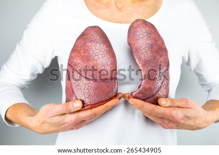 Real Human Lungs Images