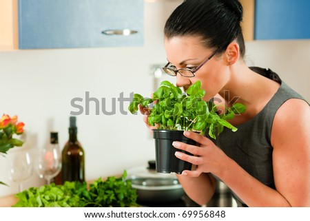 Woman smells the aroma of a basil pot in her kitchen - stock photo