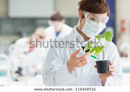 Woman standing at the laboratory while holding a plant adding chemical to soil with syringe - stock photo