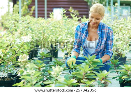 Woman taking care after plants in vegetable garden - stock photo