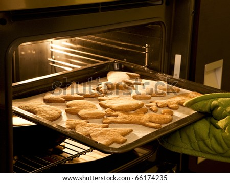 Woman taking out of the gingerbread cookies from the oven