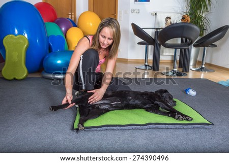 woman therapist working with dog - stock photo