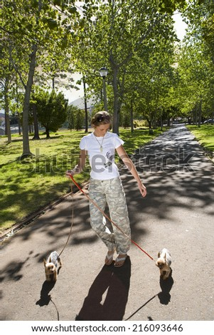 Woman walking dogs in park - stock photo