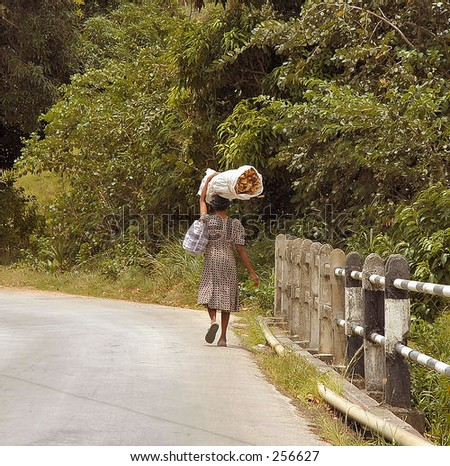 Woman walking home from store with bushel of palms