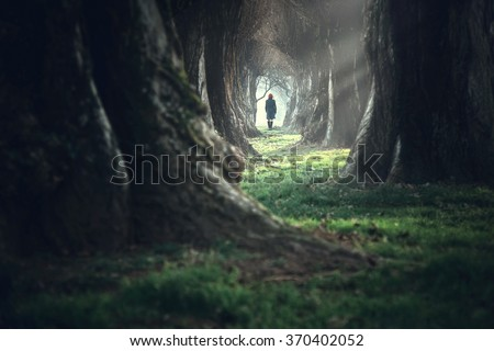 Woman walking in the mystic magic deep forest - stock photo