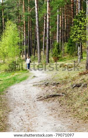 Woman walking purposefully through beautiful, sunlit forest - stock photo
