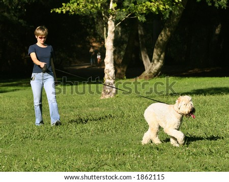 Woman walking with her dog in the park - stock photo