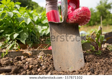 Woman wearing rubber boots working in the garden using a shovel - stock photo