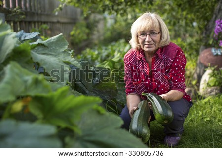 Woman with a zucchini in his garden. - stock photo