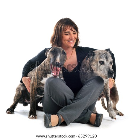 woman with american staffordshire terrier and bull terrier in front of white background