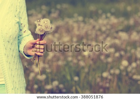 Woman with dandelion flowers