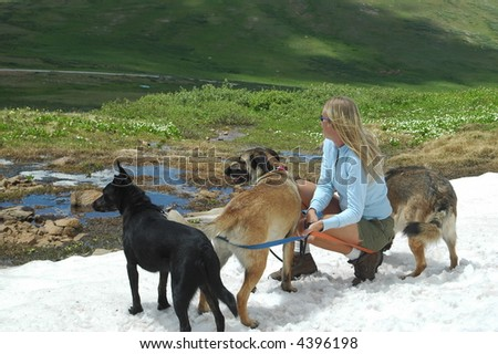 Woman with 3 dogs - stock photo