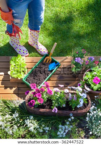 Woman with gardening tools, flowers and pots, spring gardening concept - stock photo