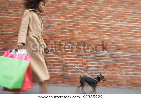 Woman with shopping bags walking dog - stock photo