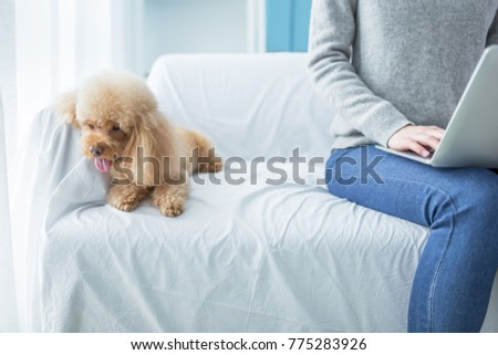 woman working at home with cute dog
