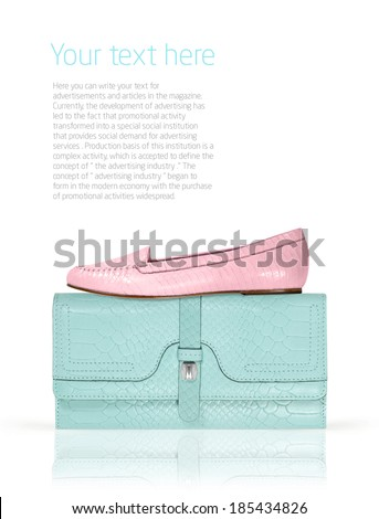 women clutch bag and moccasins isolated on a white background