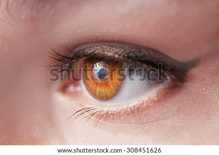 Women eye with gently lashes macro image. Very Shallow DOF - stock photo