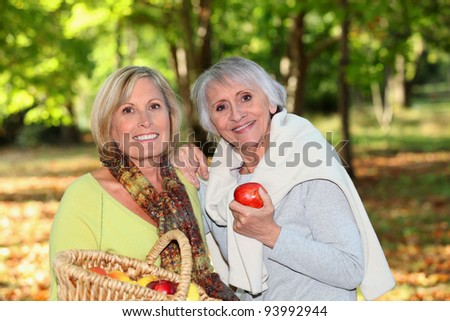 Women gathering apples - stock photo