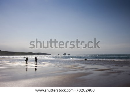 Women in beach and a dog - stock photo