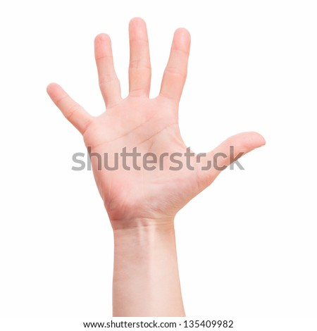 women's hand isolated onver white background