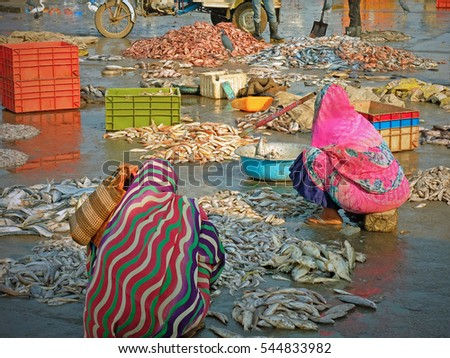 Women sorting fish on the quayside for sale at a nearby market on Diu island in Gujarat, India. The fishery in the Arabian Sea is a mainstay of the island's economy and employs many women on shore