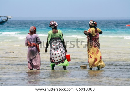 Women with colorful clothes looking for shellfishes in Zanzibar - stock photo
