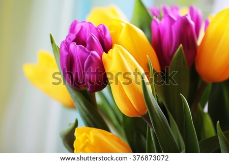 Wonderful tulip bouquet bright closeup macro photo - stock photo