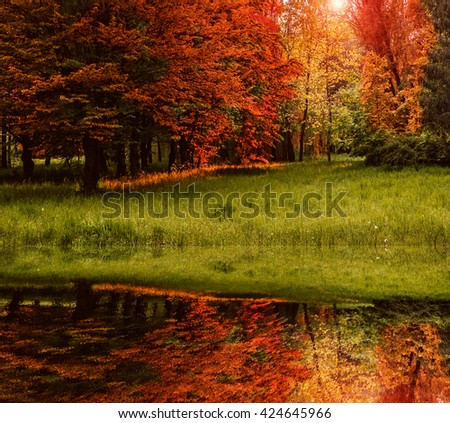 wonderful view. reflection of tree and grass in a lake in the park . Autumn trees with reflection. creative image. quadrate - stock photo