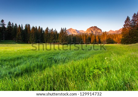Wonderful view to mountains in the national park Durmitor in Montenegro, Europe. Beauty world. - stock photo