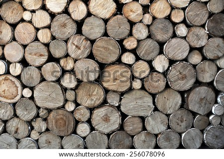 wood backdrop - stock photo