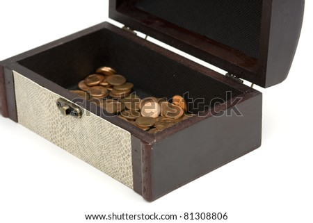 wood box  with snake skin